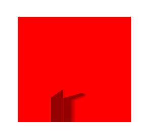 Dominika Rosińska Rehabilitacja & Trening